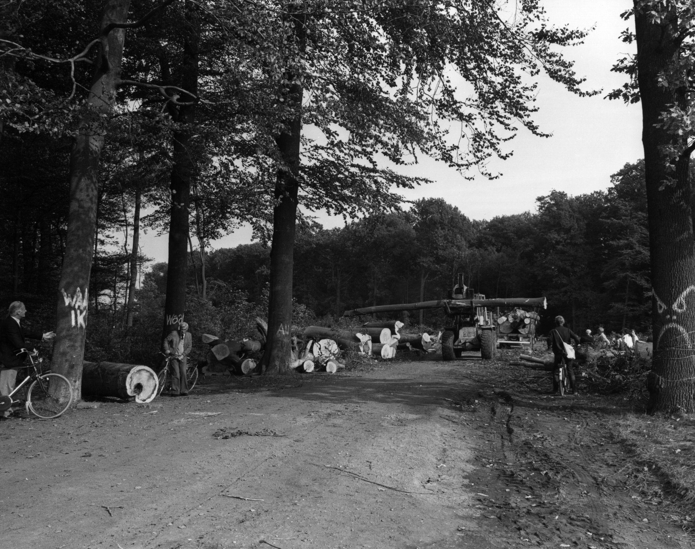 Bomenkap Amelisweerd 1982 Utrechts Archief