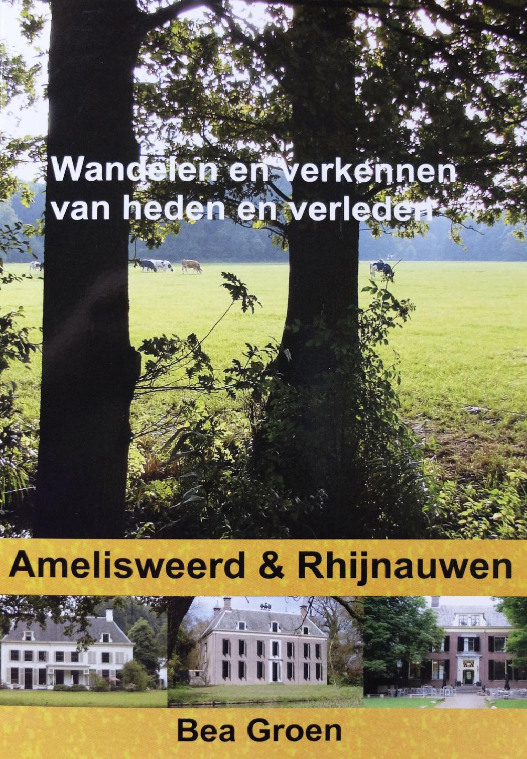 Boek Bea Groen cover